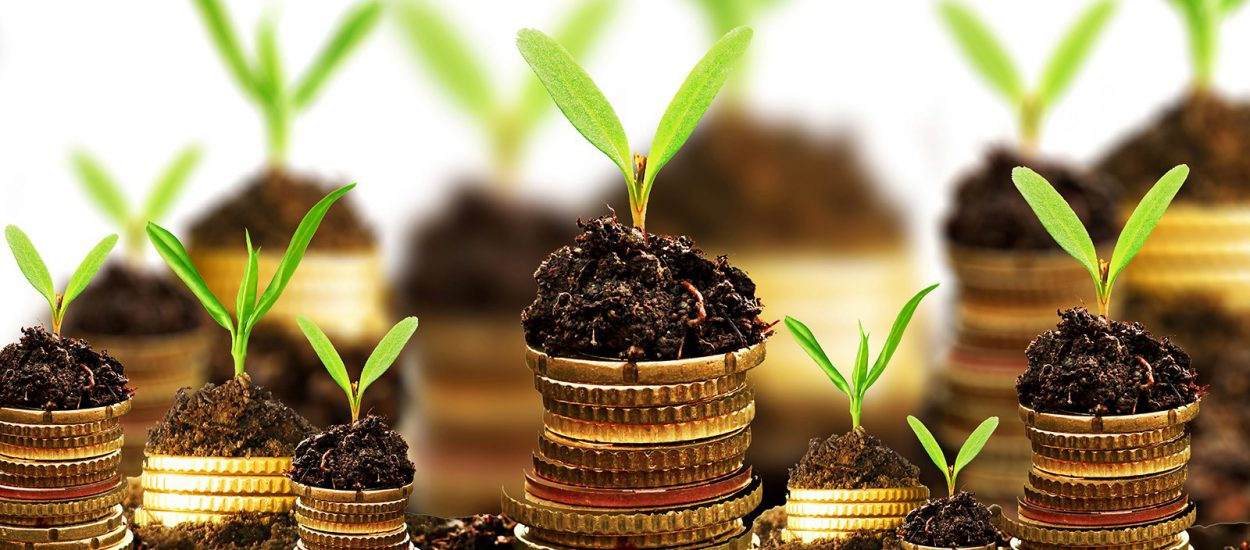 6 Tips Jitu Bagi Investor Pemula